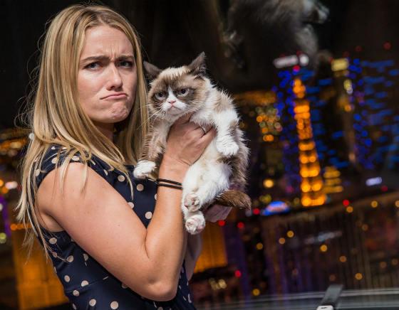 угрюмый кот и его хозяйка фото