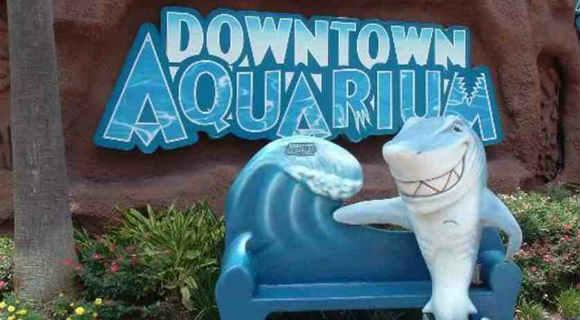 Хьюстон достопримечательности - аквариум Даунтауна