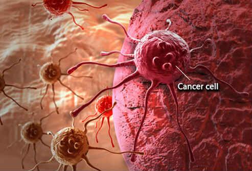 раковая клетка фото